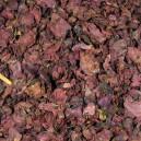 Klatschmohnblüten / Rhoeados papaveris Flores 100g