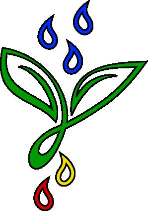 Pflanzenfärber-Shop